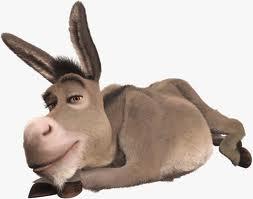 Mi mujer dice que soy un poco mula