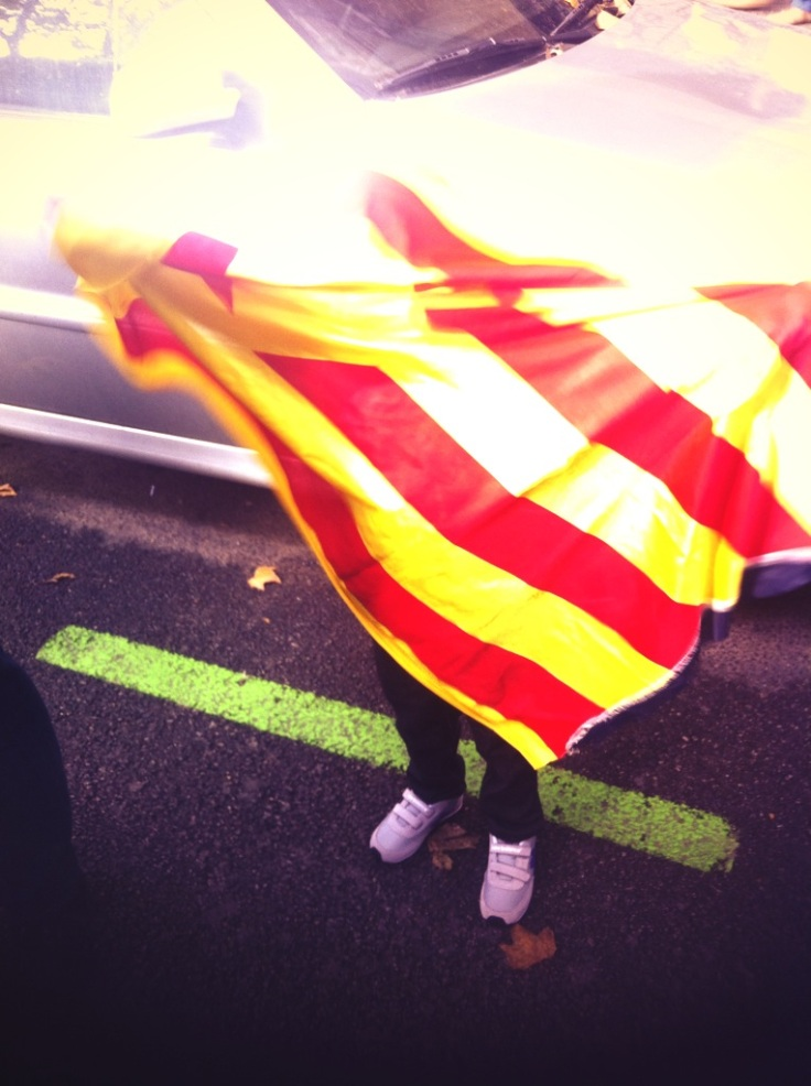 Jugant amb la bandera