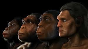 Algunos no han evolucionado...más bien involucionado